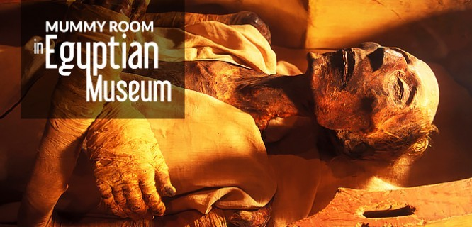 Mummy Room at Egyptian Museum